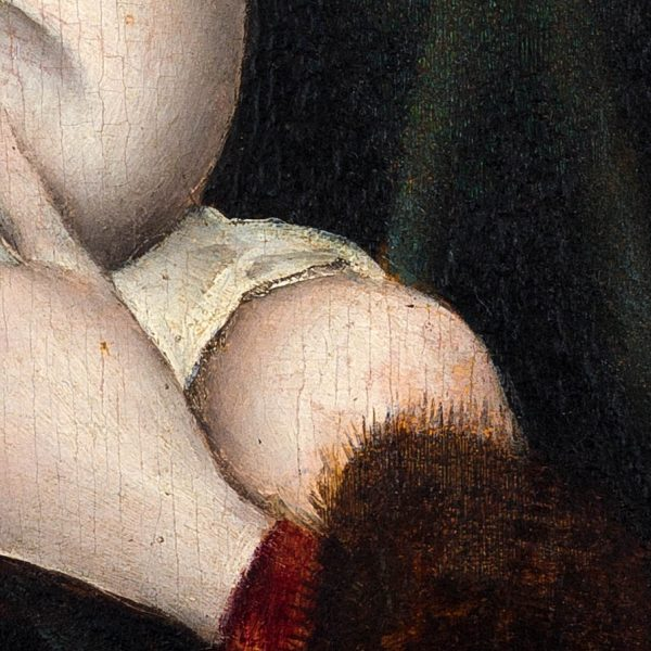 circle-joos-van-cleave-Sleeve-detail